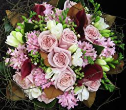 Фотография Букеты Розы Фрезия Гиацинты Белокрыльник цветок