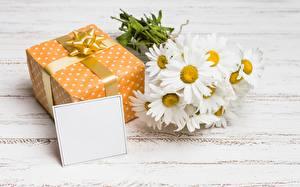 Картинка Ромашки Шаблон поздравительной открытки Подарки Цветы