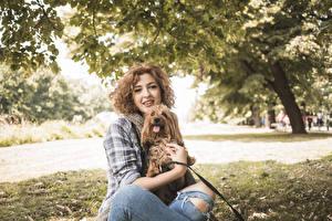 Фото Собаки Шатенка Смотрит Йоркширский терьер Девушки Животные