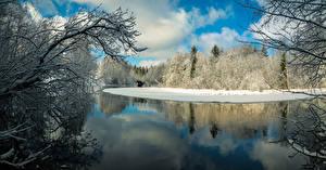 Картинка Финляндия Зима Реки Леса Ветки Karkkila Природа