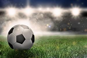 Фотографии Футбол Мяч Траве спортивный