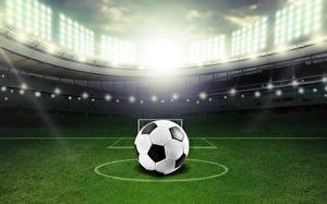 Фотография Футбол Мяч Газон Стадион Спорт