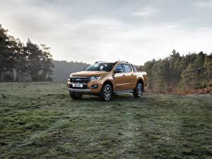 Обои Форд Металлик Пикап кузов 2019 Ranger Wildtrak авто
