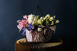 Фото Гиацинты Фиалка трёхцветная Корзина цветок