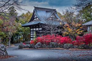 Фотография Япония Здания Дизайна Кустов Numata Города