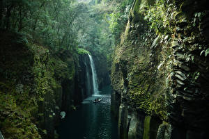 Фото Япония Реки Водопады Леса Скале Мхом Takachiho Kyushu Природа