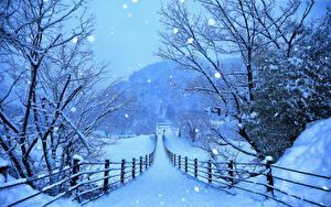 Фото Япония Зима Дороги Снег Забор Shirakawa-go and Gokayama Природа