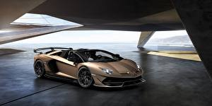 Картинки Lamborghini Родстер Aventador SVJ Автомобили
