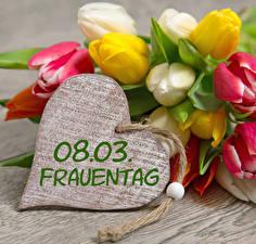 Фото 8 марта Тюльпаны Сердце Немецкий Цветы