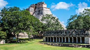 Картинка Мексика Пирамида Деревья Uxmal Column Building Города