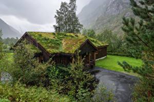 Фотографии Норвегия Здания Деревья Крыша Мох Osa Hordaland Города