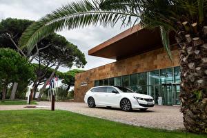 Фото Peugeot Белых 2018-19 508 SW GT Line Worldwide Автомобили