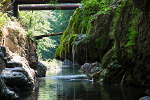 Картинки Румыния Водопады Речка Утес Мох Cascade Bigar Природа