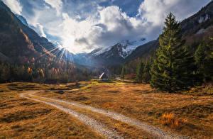 Обои Словения Горы Лес Дома Пейзаж Ели Лучи света Zadnja Trenta Природа