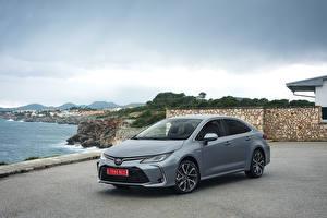 Обои Тойота Гибридный автомобиль Серый 2019 Corolla Hybrid Sedan Worldwide