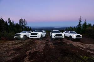 Фотография Toyota SUV Белый 4Runner, Tacoma, Tundra, Sequoia