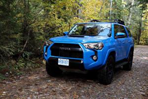Обои Toyota Внедорожник Голубой Металлик 2015–19 4Runner TRD Pro Автомобили