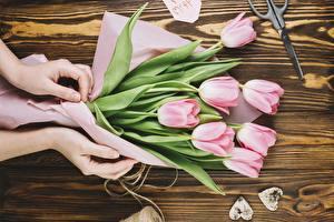 Картинка Тюльпаны Руки