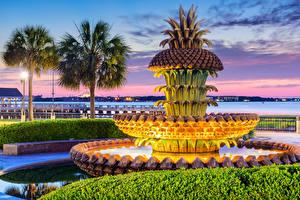 Фото США Фонтаны Вечер Дизайн Пальмы Charleston Pineapple Fountain