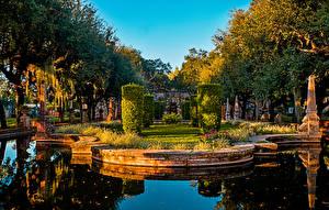 Фотография США Сады Пруд Майами Дизайн Кусты Деревья Vizcaya Museum and Gardens
