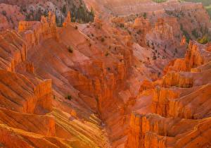 Картинка Штаты Парки Горы Cedar Breaks National Monument Природа