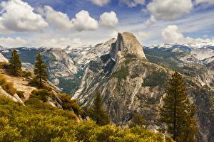 Обои Штаты Парки Горы Йосемити Ель