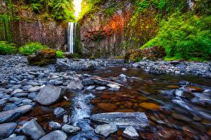 Фото Штаты Водопады Камень Утес Abiqua Falls Oregon Природа