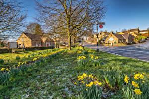 Фотографии Великобритания Дома Нарциссы Улица Baslow  Derbyshire Города