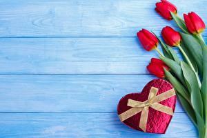 Фотография День всех влюблённых Тюльпаны Бантик Доски Сердечко Цветы