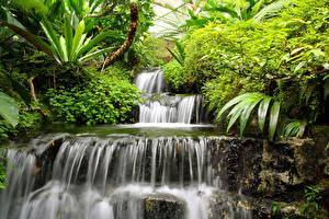 Обои Водопады Природа картинки