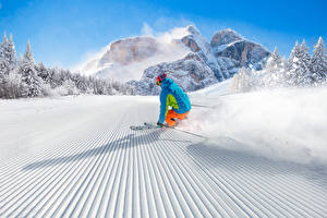 Фотография Зима Лыжный спорт Снег Униформа Скорость