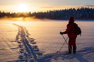 Фотографии Зимние Рассвет и закат Лес Лыжный спорт Снеге Природа