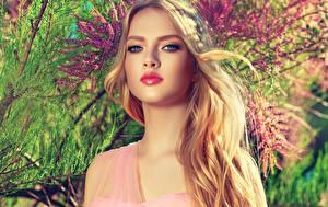 Обои Блондинки Лица Смотрят Косметика на лице Красивые Девушки