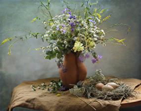 Фотографии Ромашки Васильки Антирринум Ваза Гнездо Яйца Ветвь Цветы