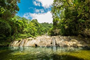Фото Колумбия Тропики Водопады Леса Речка Guajira Природа