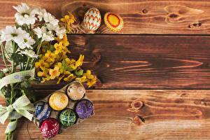 Фотографии Пасха Букеты Хризантемы Доски Яйца Цветы