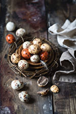 Обои Пасха Яйца Гнездо Еда картинки