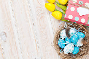 Обои Пасха Перья Тюльпаны Доски Яйца Гнезда