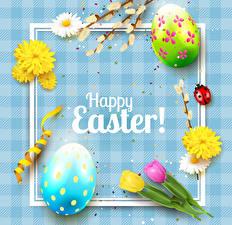 Картинки Пасха Тюльпаны Божьи коровки Маргаритка Английский Яйца Цветы