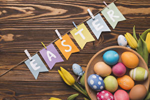 Фотографии Пасха Тюльпаны Доски Яйца Английский Разноцветные