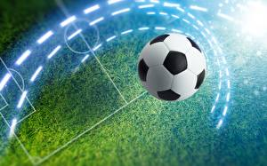 Фотография Футбол Мяч Газон Спорт