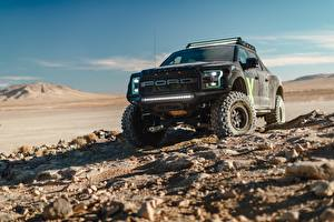 Фотографии Ford SUV Raptor F-150 2017 Машины