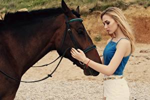 Картинка Лошади Блондинка Коричневая Рука Девушки Животные