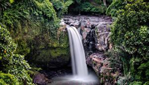 Картинка Индонезия Водопады Скале Мха Tegenungan Waterfall Bali Природа