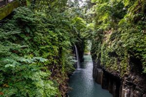 Фото Япония Реки Водопады Скала Кусты Takachiho Gorge Природа