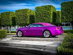 Картинка Rolls-Royce Фиолетовые Роскошные 2017 Dawn in Fuxia автомобиль