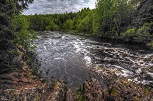 Картинки Россия Речка Леса Suna River Republic of Karelia