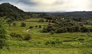 Фотография Испания Луга Леса Дома Траве Granera Catalonia Природа