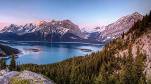 Фотография Швейцария Горы Озеро Леса Пейзаж Природа