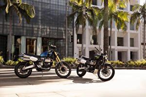 Картинка 2 Triumph Scrambler 1200 XC, Triumph Scrambler 1200 XE Мотоциклы